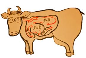 牛には胃袋が 四つある